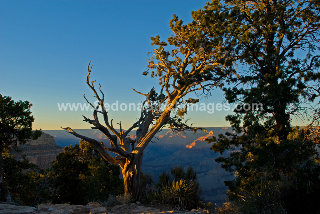 GC2618.jpg, Sedona Stock Images, Sedona Stock Photo, Landscape Photographer Victor Cariri, Hermit's Rest