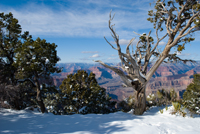 Hermit's Rest , Grand Canyon AZ, South Rim West, Southwest, Photograph by Victor Cariri