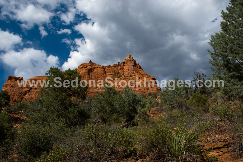 Sphinx4349.jpg, Sedona Stock Images, Sedona Stock Photo, Landscape Photographer Victor Cariri, The Sphinx