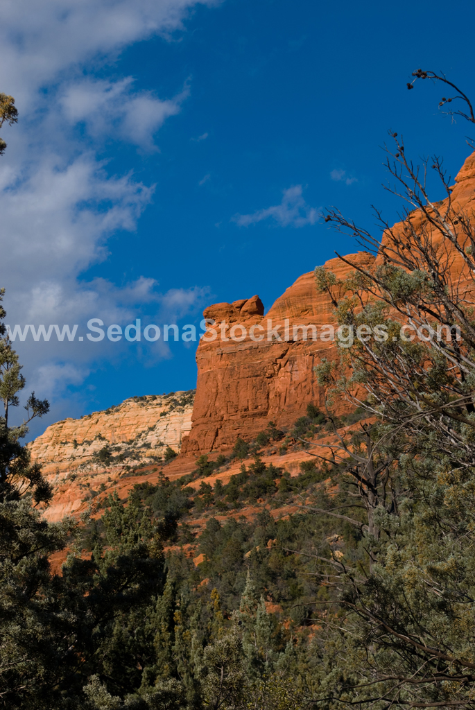 TeacupTr3206.jpg, Sedona Stock Images, Sedona Stock Photo, Landscape Photographer Victor Cariri, Teacup Trail